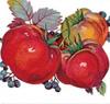 Фруктово-овощные маски