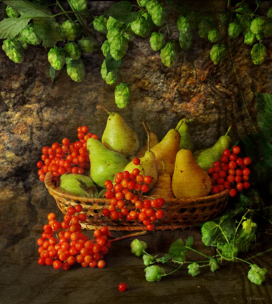 здоровое питание в течение дня